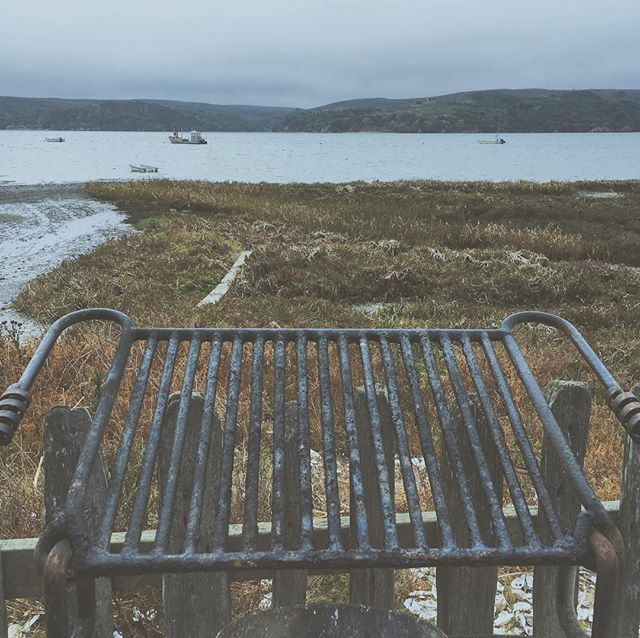 #bbq #northcoast #hogisland #offsite #natureart