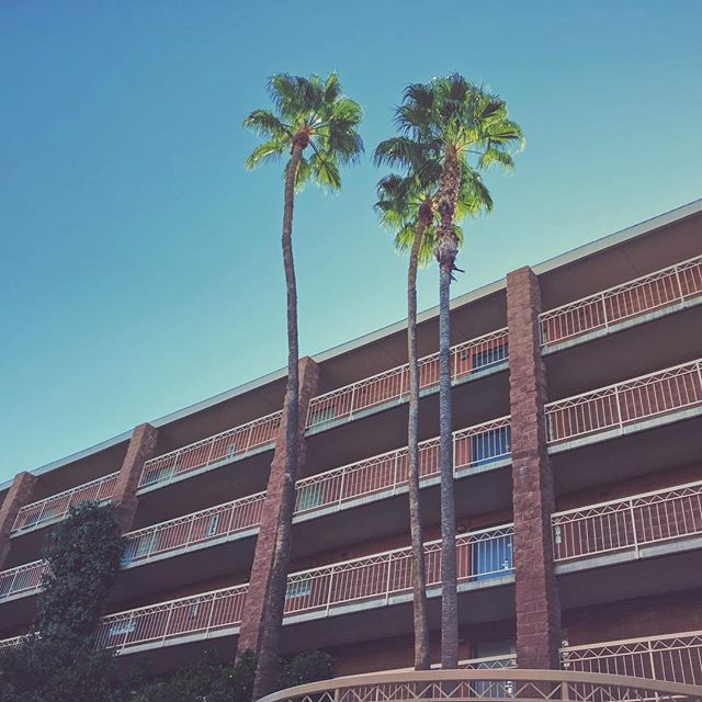 #thesuites #urbanart #palms #tucson #arizona