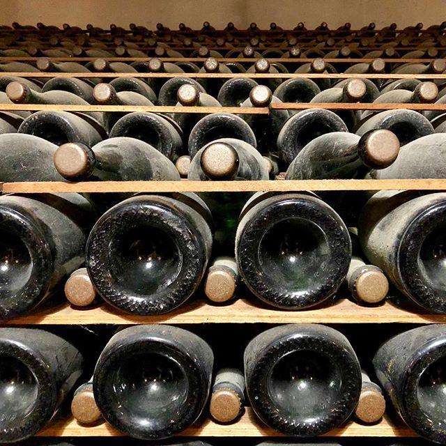 99 year old #champagne #guerneville #california #urbanart