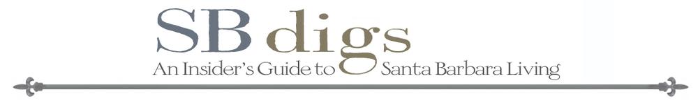 sbdigs-banner-final.jpg