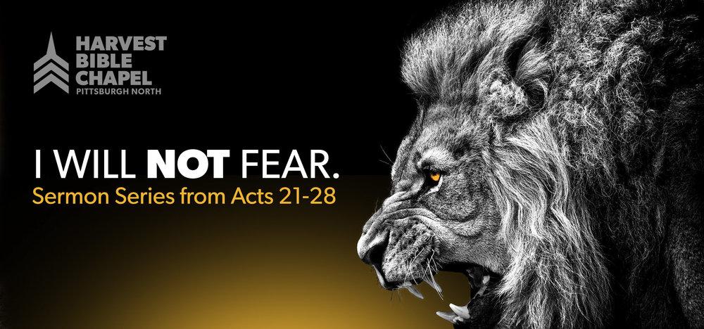 LION FEAR Website banner.jpg