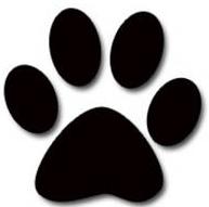 cat's paw.jpg