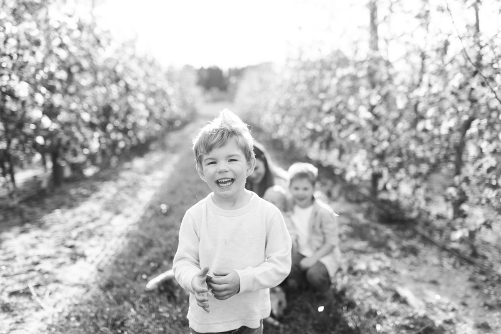 Family Mini Session | Brothers | What to Wear | Family Photos | Orchard with Spring Blooms | Laurenda Marie Photography