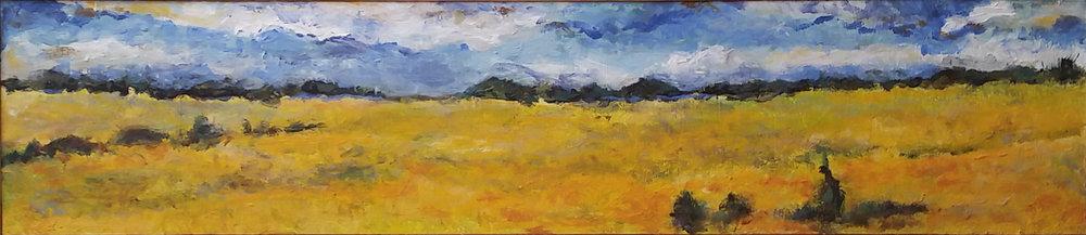 Goldenrod Fields [not cc].jpg
