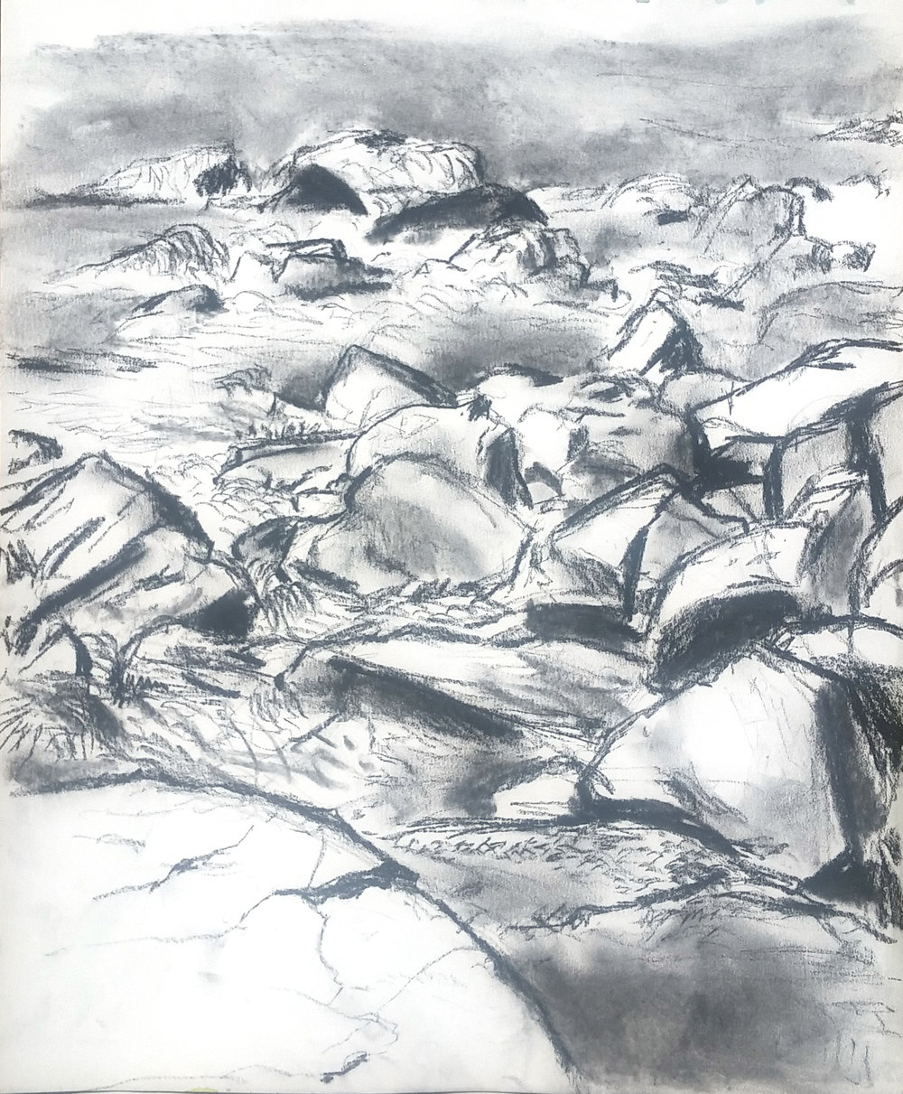 Tidal Rocks.jpg