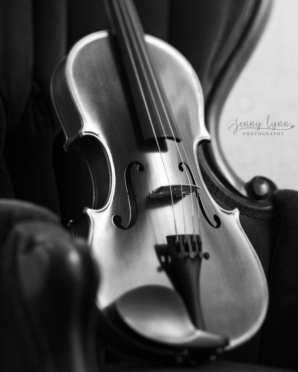 Violin_1_fb.jpg