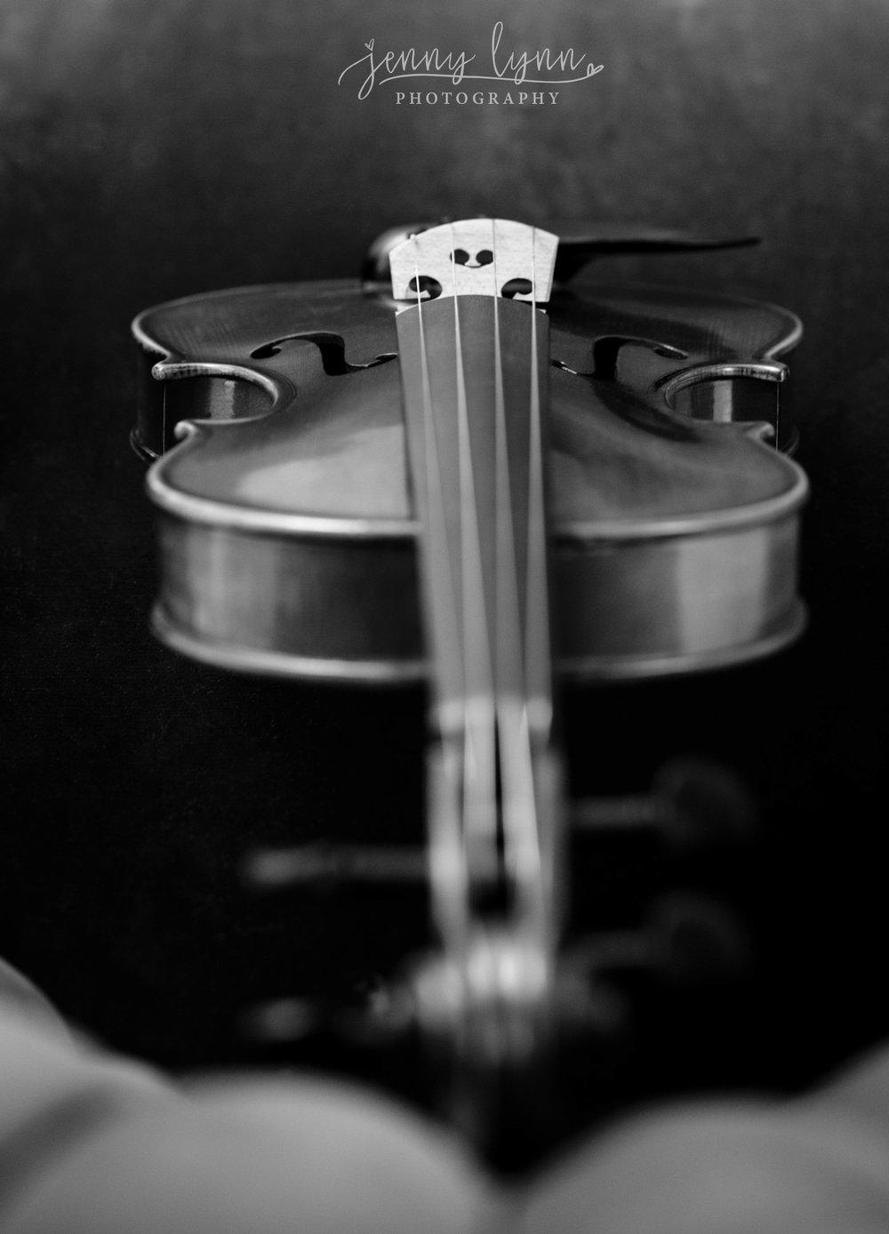 Violin_3_fb.jpg