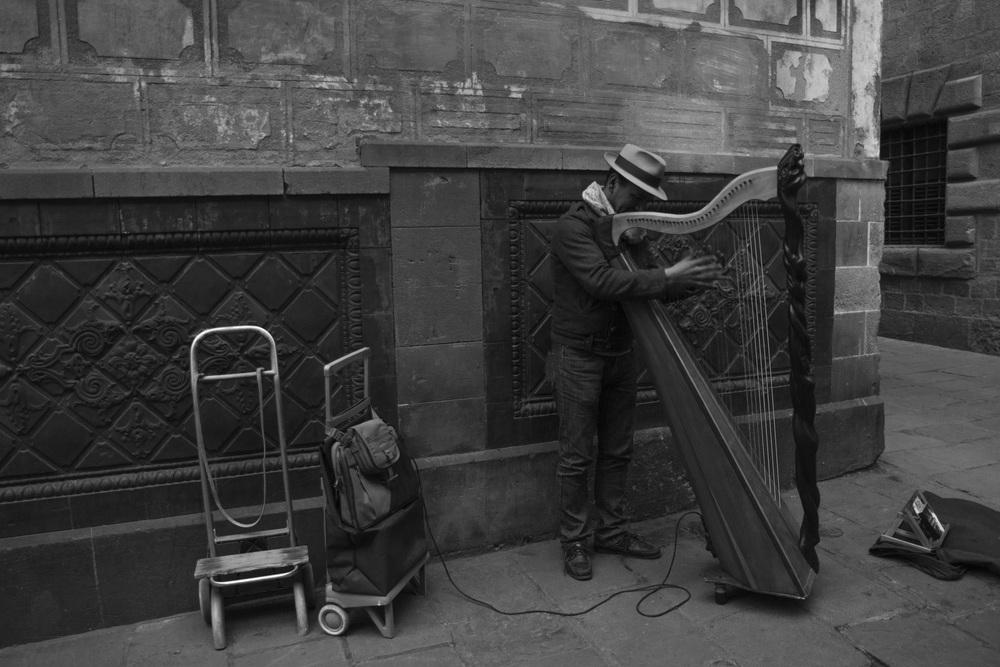 Gotica Harp BW.jpg
