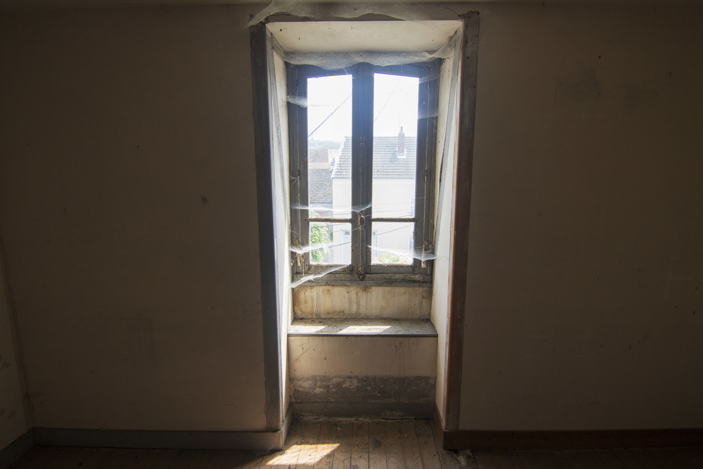 Dormans- House window webs.jpg