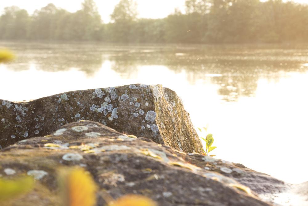 Dormans-River Rock2.jpg