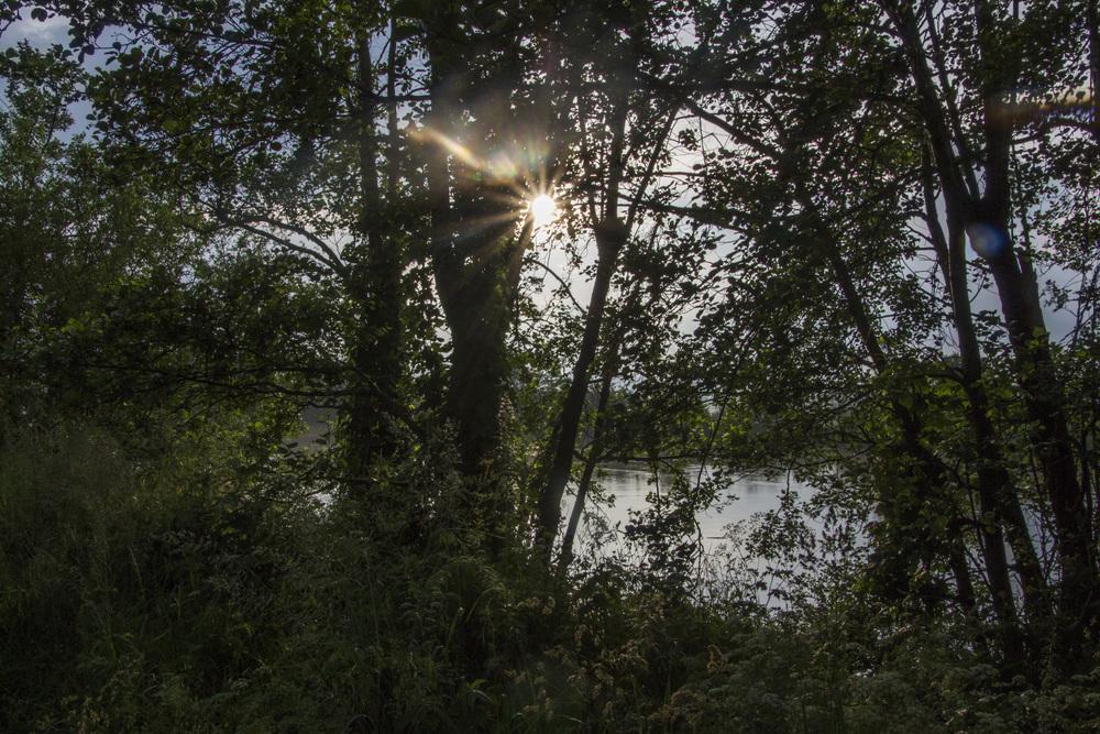 Dormans-River Sun copy.jpg
