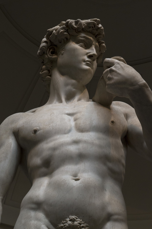 David torso.jpg