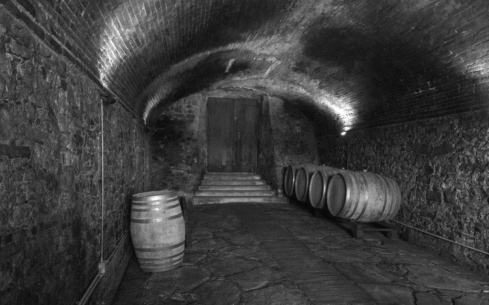 Vineyard 1 cellar.jpg