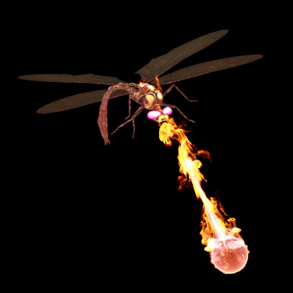 Dragonfly Test.jpg