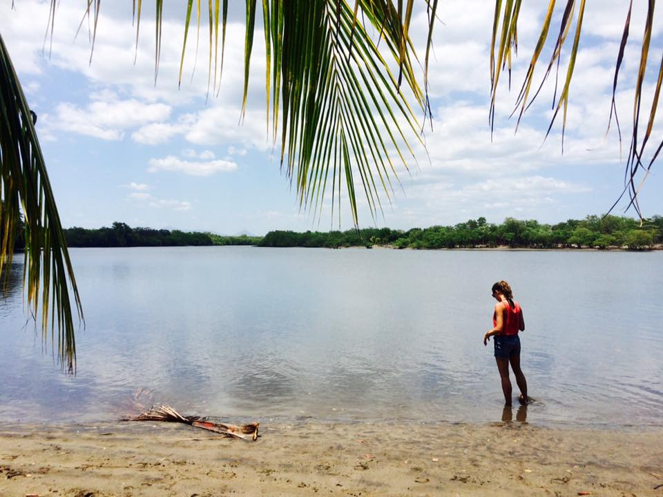 Isla Los Brasiles