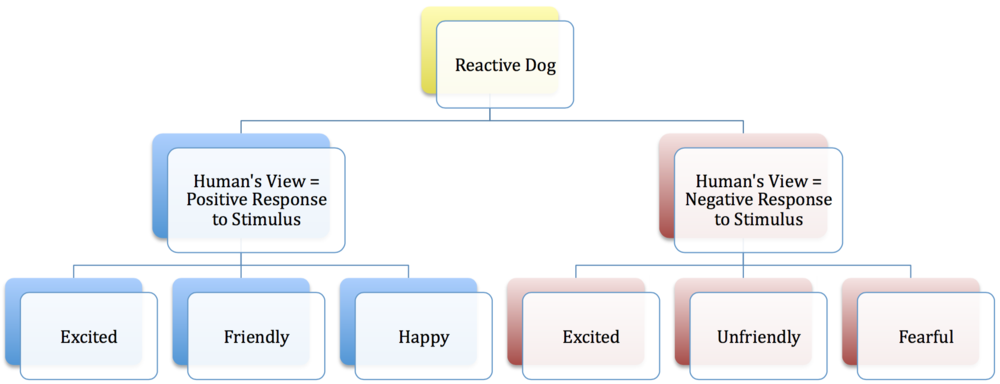 """Reactive dogs are not only filed under the """"negative"""" category. Friendly, happy dogs are also considered reactive if they exhibit behavioral responses on the opposite end of the spectrum. The goal of neutrality is to nullify learned or inherent responses to certain stimuli."""