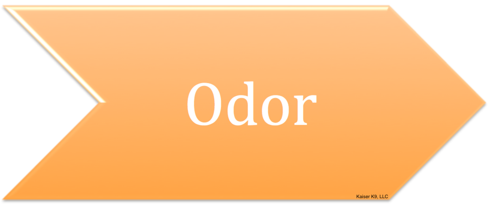 Foundations for Principle 1 - Odor Conditioning