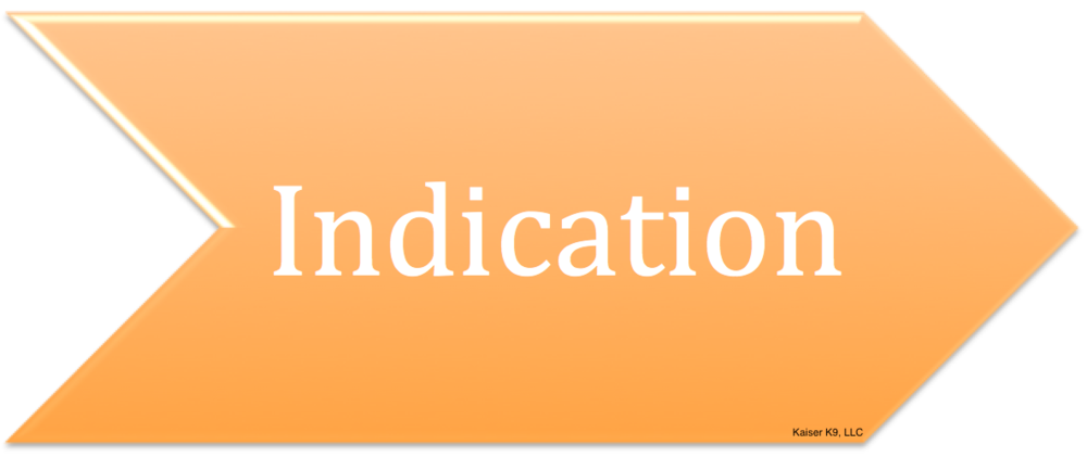 Foundations for Principle 3 - The Indication