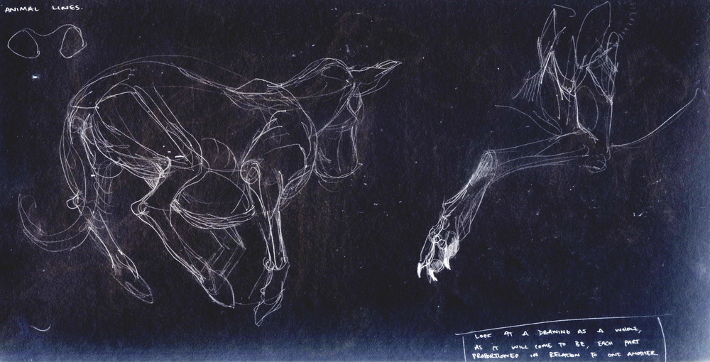 Animal Lines.jpg