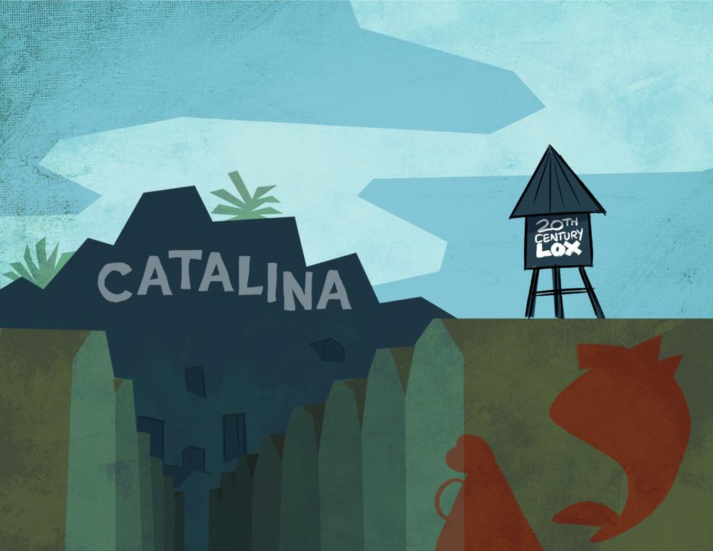presentation_00_0009_catalina.png