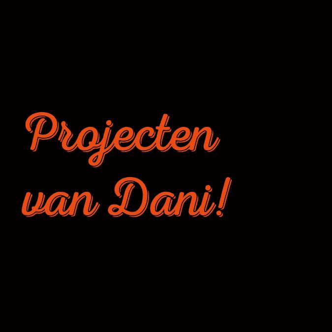 Projecten-van-dani-klein.jpg