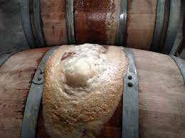 A Heavily Fermenting Barrel