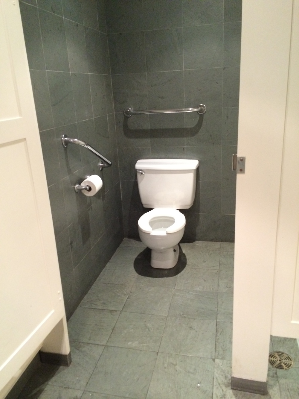 Picture of accessible washroom stall.