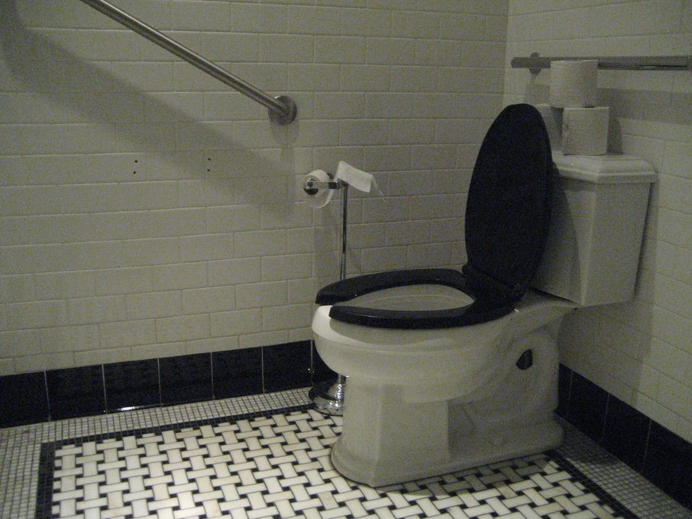 Picture of toilet and 2 grab bars in accessible washroom