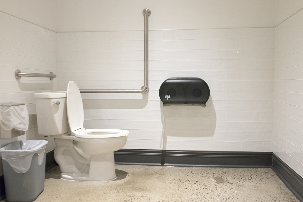 Picture of washroom with two grab bars