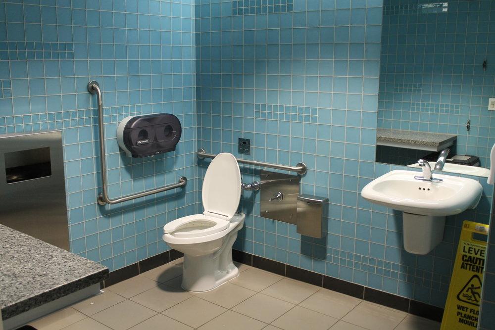 Beriatric Toilet and Restroom.JPG