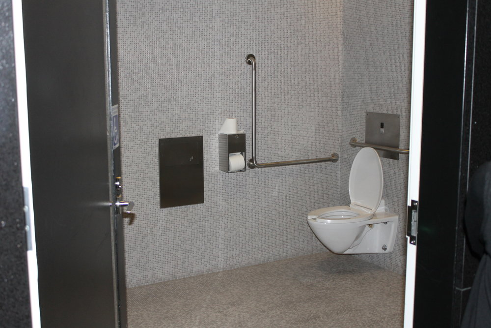 Picture of one of the accessible, single occupancy washrooms