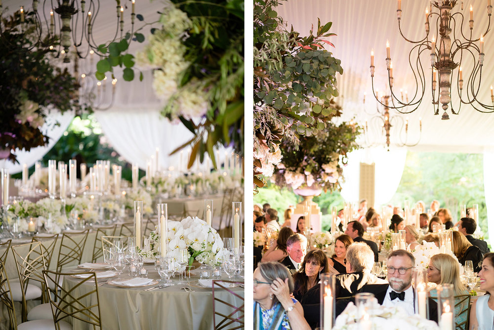 guests at elegant outdoor wedding