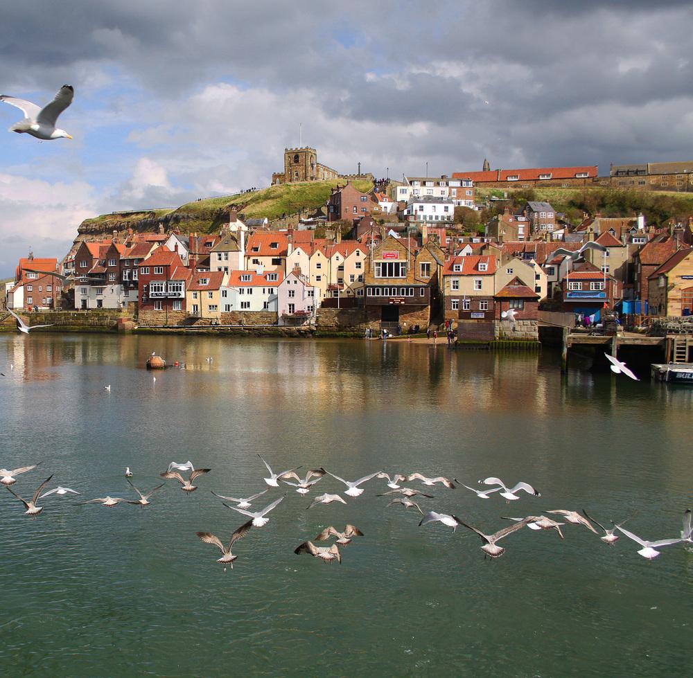 Village flock