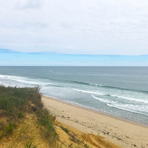 WELLFLEET | CAPE COD