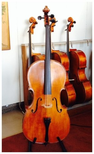 Lawrence LaMay cello, 1975
