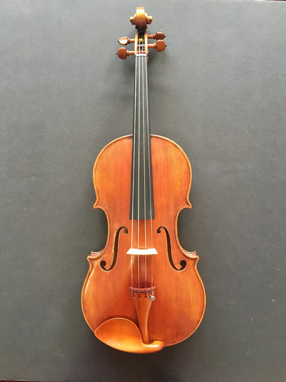Viola by Eugene Holtier and Petio Kostov