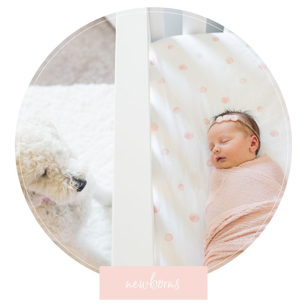 Clare Gratz Photography | Newborn Photographer