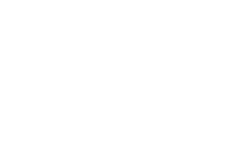 roon.png