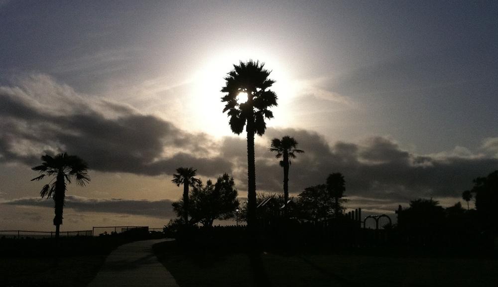 Santa Barbara 2012  East Mesa,Shoreline Park