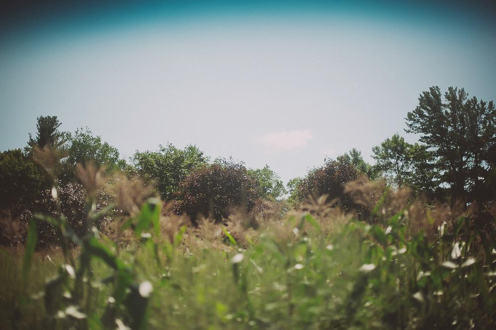 NinaLilyPhoto_WeatherlyPAWedding_HallBlog03
