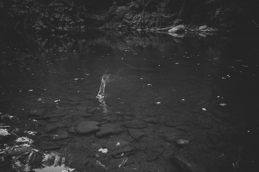 NinaLilyPhotography_DevilsPoolEngagement_Blog20