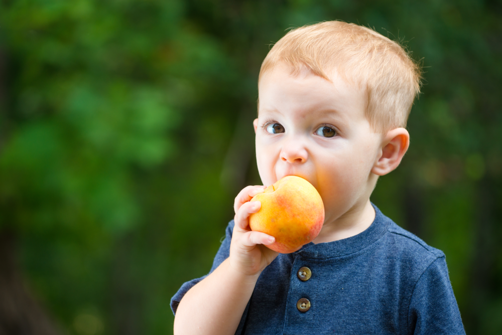 Child Eating Fruit.png