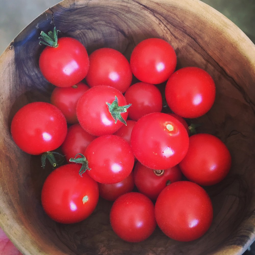 Homegrown cherry tomatoes. So abundant at this time of the year. Easy to grow and their taste will beat every other store-bought kind. My little helpers have been filling this bowl every or every other day these past four weeks with fresh ripened tomato fruits.