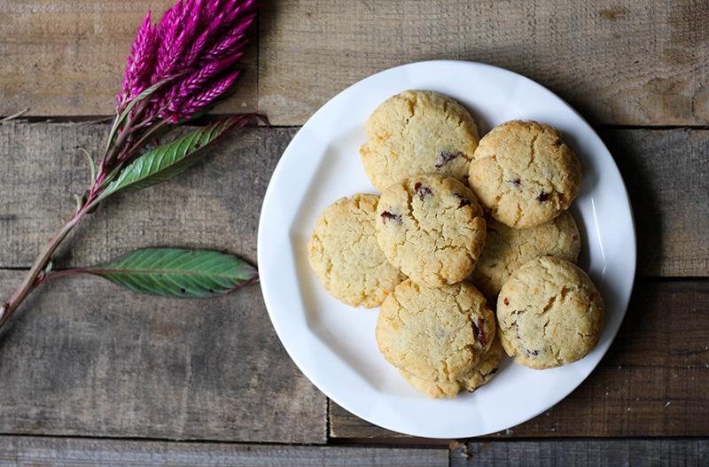autoimmune paleo cranberry cookies_3.png