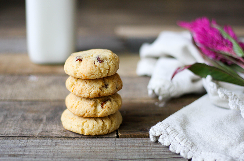These Paleo Cranberry Cookies are nut free, egg free, grain and gluten free, and completely Autoimmune Protocol (AIP) friendly! They're super fluffy, they're perfect for fall weather, and they're low in sugar! Click the link to grab the recipe.