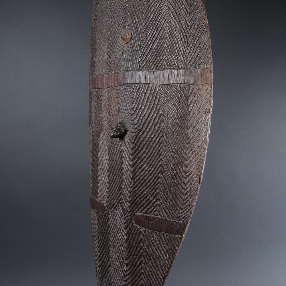 An Early Broad Shield nineteenth century, New South Wales  To be offered for sale in my June exhibition of  Important Australian Indigenous Art .