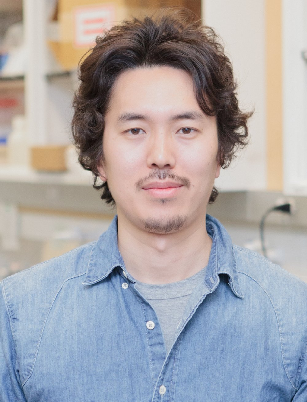 Hideki Nakamura, Ph.D.   1) Dept. of Cell Biology, Johns Hopkins University School of Medicine  2) Center for Cell Dynamics, Johns Hopkins University School of Medicine    website→