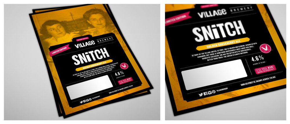 VillageSnitch_Panel-2.jpg
