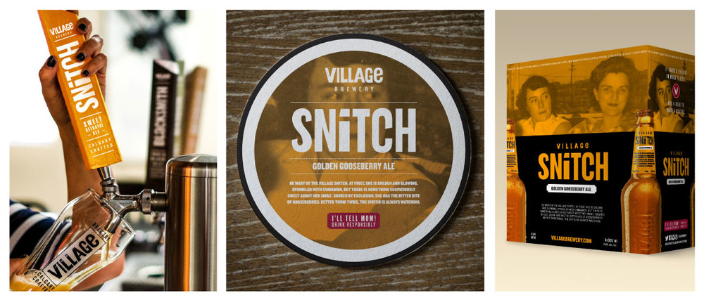 VillageSnitch_Panel-3.jpg