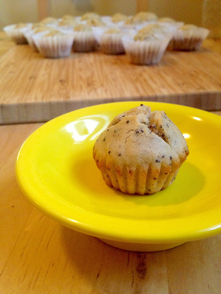 Don't you love mini cupcakes? They are tiny cute bites of goodness!